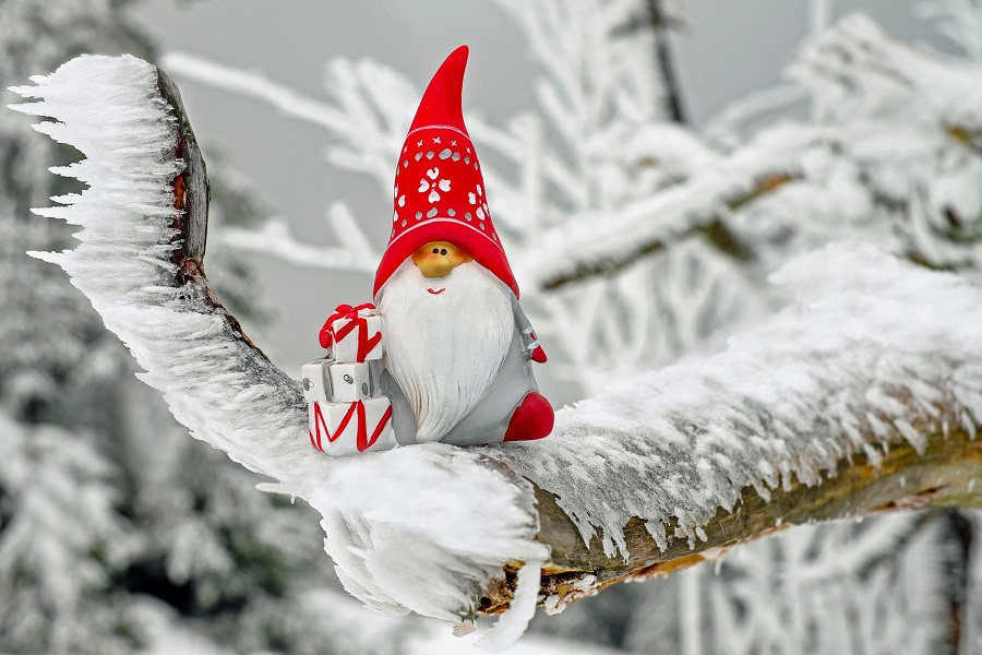 animated santa sitting on a frosted tree branch